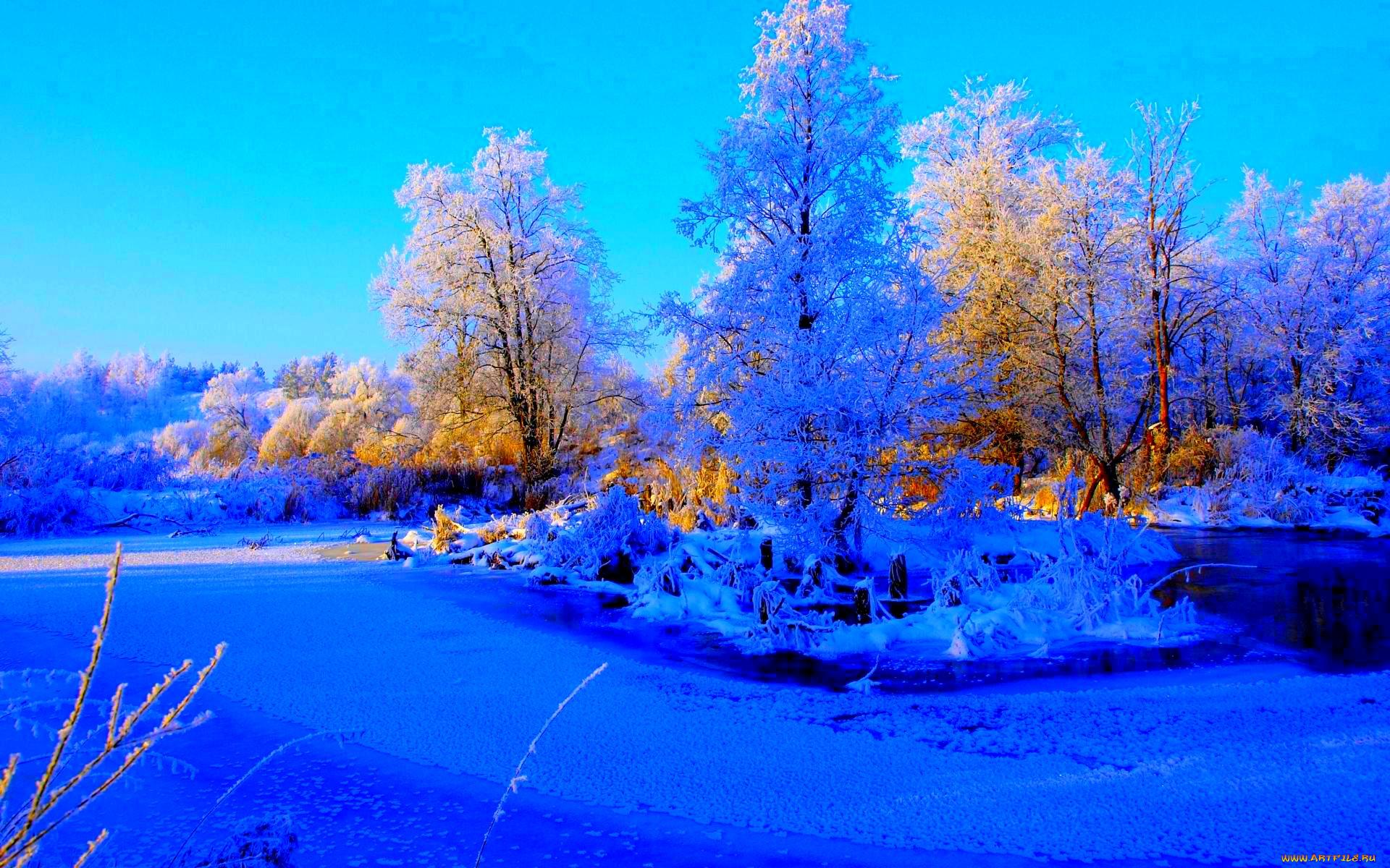 вереск картинки зима для компа это